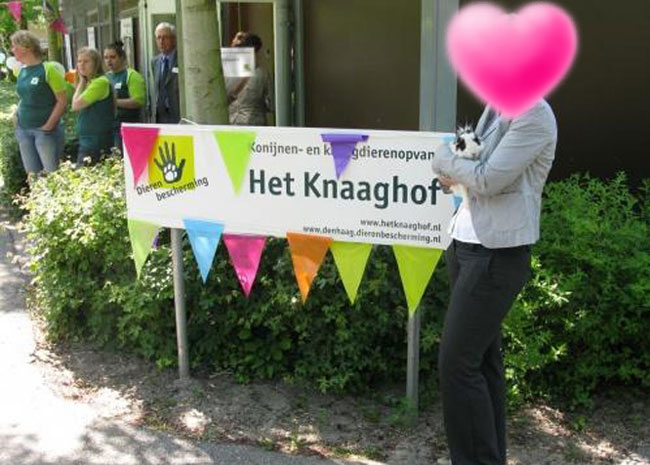 Dierenbescherming Rijswijk Knaaghof # (19)