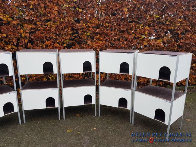 Dierenbescherming Rijswijk Knaaghof # (13)