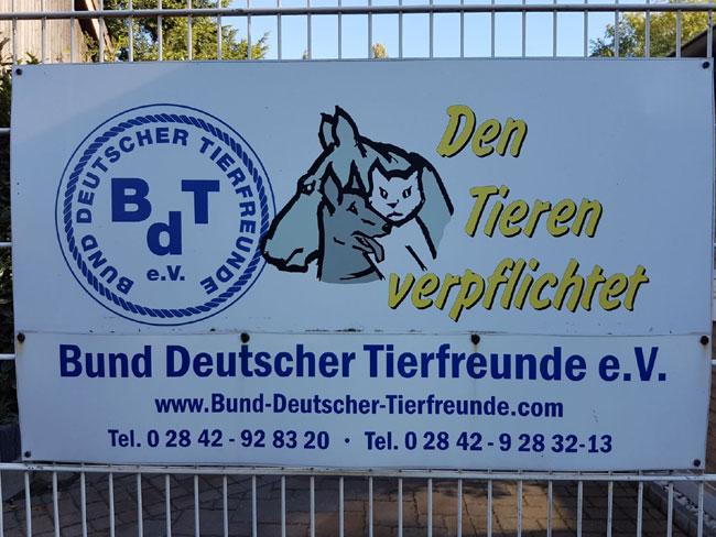 Tierheim Kamplintfort # (8)