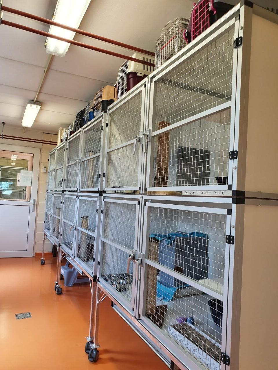 Dierenbescherming Hoofddorp # (9)