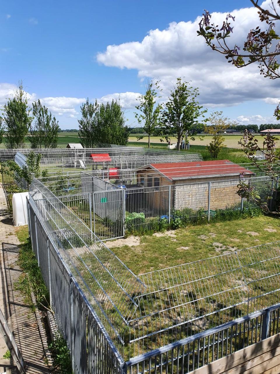 Dierenbescherming Hoofddorp # (5)