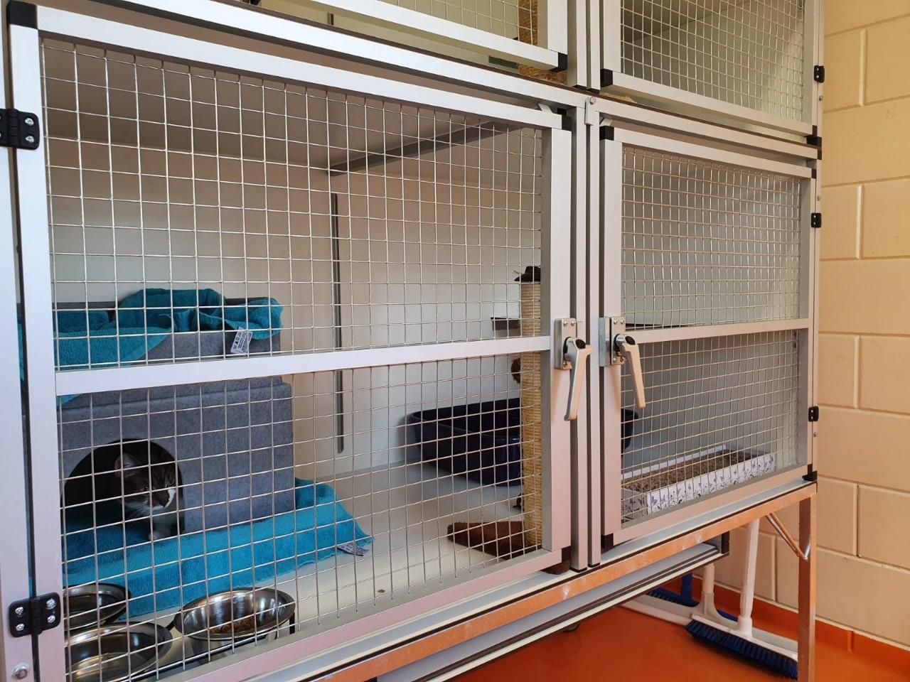 Dierenbescherming Hoofddorp # (10)
