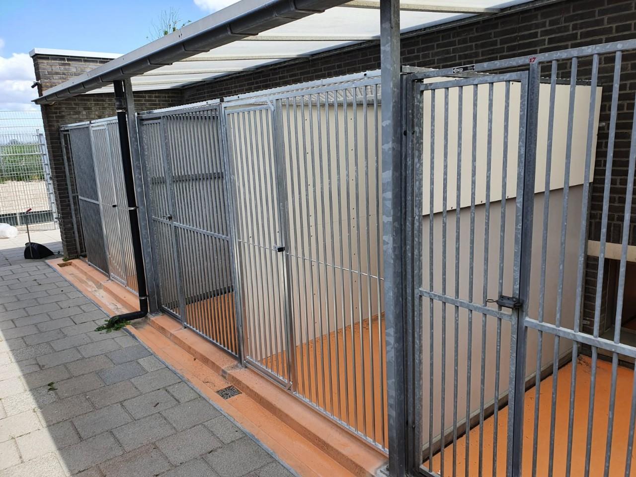 Dierenbescherming Hoofddorp # (12)